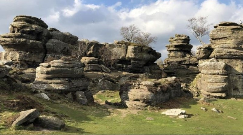 Brimham Rocks YHOA Middle Distance Championships 24 November 2019