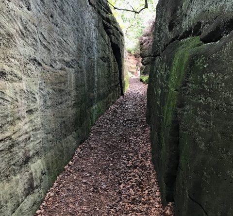 Plumpton Rocks – Sun 10 Oct – YHOA Middle Distance Champs